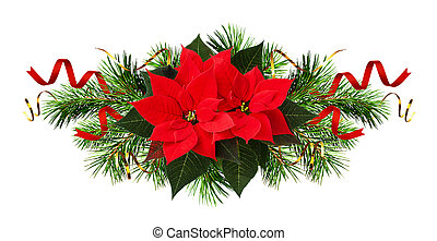 Red poinsettia flowers and Christmas decorations isolated on...