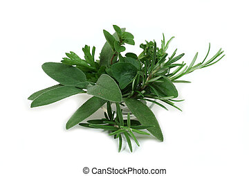 Aromatic herbs for cooking