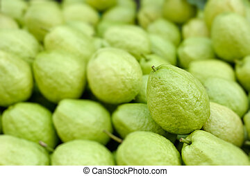 Guavas in group, fresh green color fruit.