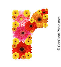 abc - flower alphabet, r, lower case character