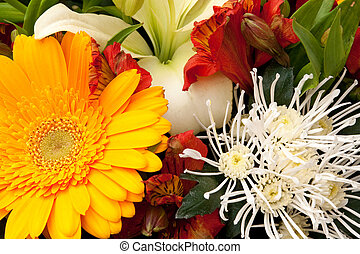 bouquet - beautiful bouquet of flowers, background
