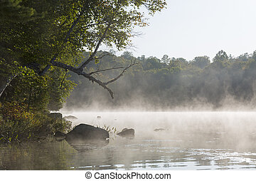 Misty morning on a lake in late summer - Ontario, Canada -...