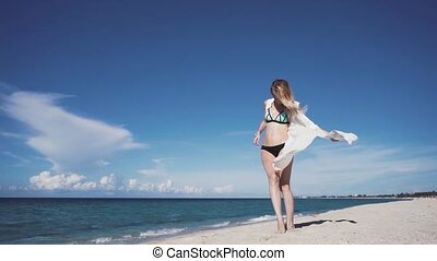 Girl, beach, sea, wind in your hair - Waving in the wind the...