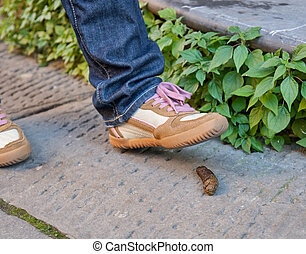 Foot of a pedestrian who is about to step on a dog poop -...