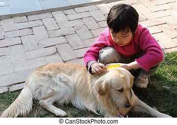 niño, asiático, perro, juego