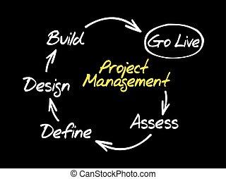 Project management mind map flowchart, business concept for...