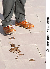 Daily nuisance - Innocent pedestrian about to tread in a...