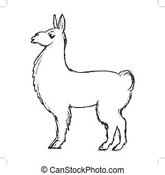 lama animal from South America - vector, sketch, hand drawn...