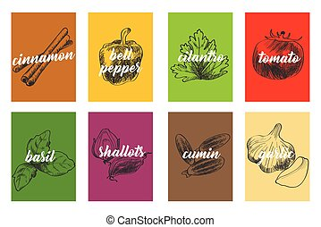 Food Cooking Ingredients Illustration - A vector...