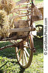 ancient chariot with the hay of a farmer - ancient chariot...