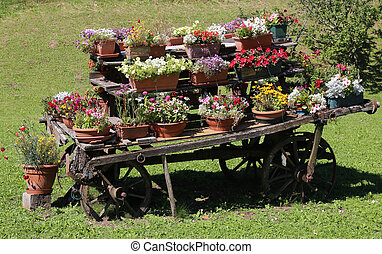 wooden chariot with flower pots in the garden - old chariot...