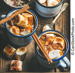 Hot chocolate with cinnamon and roasted marshmallows, square...