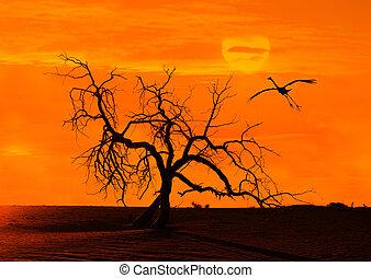 bulrushes against sunlight over sky background in sunset...