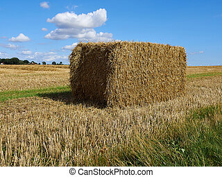 Hay bale stack grain crop in a field