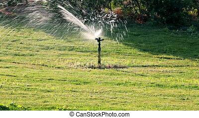 sprinkler watering green lawn