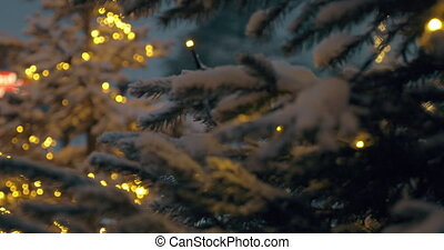 Fir trees with Christmas lights in snowy evening park -...