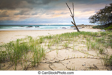 Australia Beach Sunrise - Australian beach sunrise on...