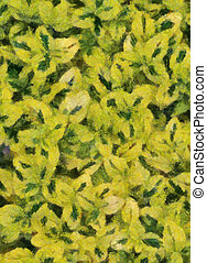 Variegated Carmel Creeper Fuzzy Background (Oil Painting - Monet