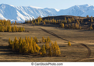 Altai mountains, Chuya ridge, West Siberia, Russia.