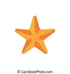 Flat textured starfish, star fish icon, symbol - Flat style...