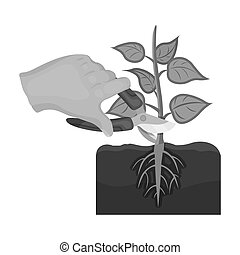 Plants, single icon in monochrome style .Plants, bitmap,...