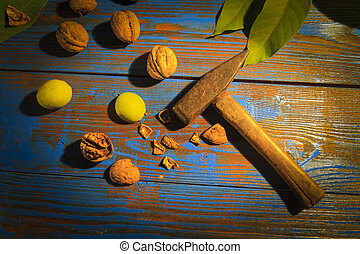 walnuts and hammer on the table , autumn and harvest
