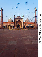 Delhi Main Mosque Birds Blur Morning - Birds fly around the...