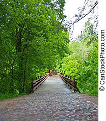 bridge in the park