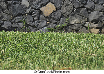 Turf - Recently cutted turf. Gardening and ecology concept