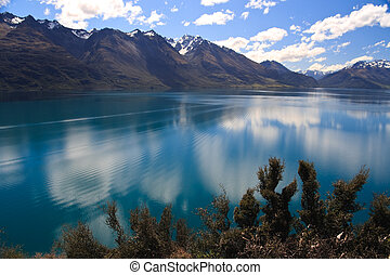 Lake Wakatipu foreground vegetation - Scenic view of Lake...