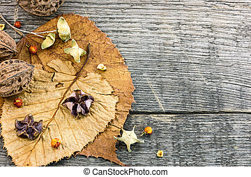 dried plants and flowers, nuts, fallen leaves on wooden...