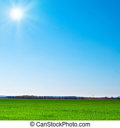 landscape - beautiful landscape, green grass, blue sky