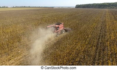 Combines harvest sunflower during the day. Aerial shoot....