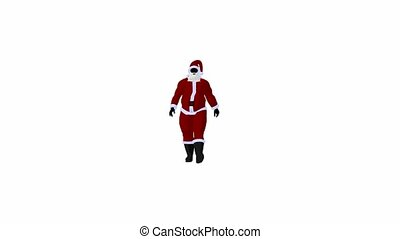 Santa Claus - Santa claus on a white background