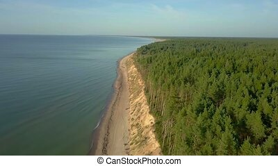 Camera goes between sea and steep bank with a pine forest