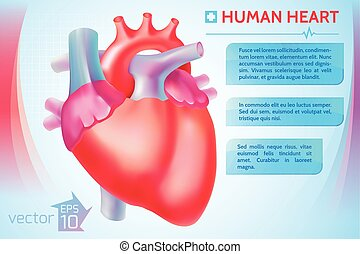 Cardio Medical Template - Cardio medical template with text...
