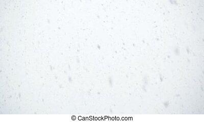 Heavy snowfall - Falling snow flakes