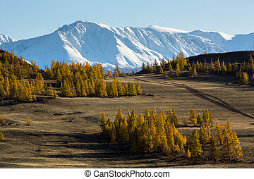 Valley and Snow Mountain, Altai mountains, Chuya ridge, West...