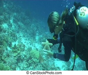 diver star diving underwater video - diving underwater video...