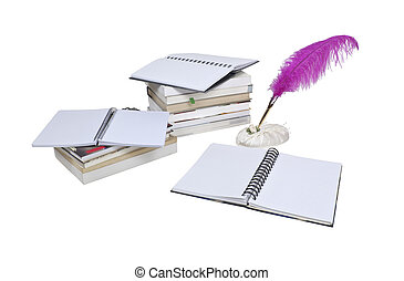 Report Writing - Report writing shown by a feathered pen...