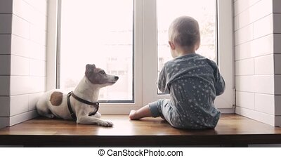 Baby boy and the dog looking out the window - Little boy and...