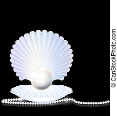 beads and shell - black background with the large white open...
