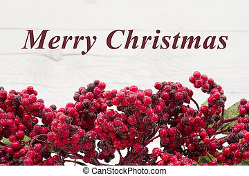 Old fashion Christmas greeting, Frost covered red holly...