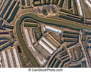Aerial. Textured fields of swampy salt lakes. Salines...