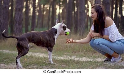 Girl playing with her dog in the forest at sunset - Young...