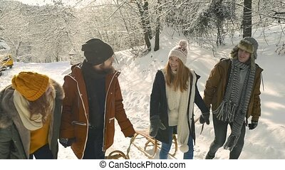 Teenagers on a walk in winter nature. Boys and girls having...