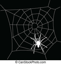 spiderweb white illustration