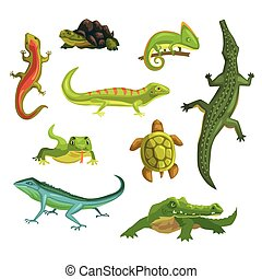 Reptiles and amphibians set of vector Illustrations isolated...