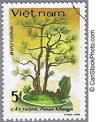 Pinus khasya - VIETNAM - CIRCA 1986: A stamp printed in...