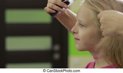 Hairdresser combing client's hair with comb - Profesisional...